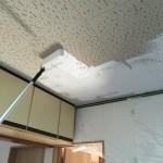 [DIY]ジプトーン天井を白ペンキで塗装してみた 方法と留意点まとめ